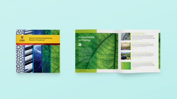 UNSW Publications | Chemical Engineering brochure
