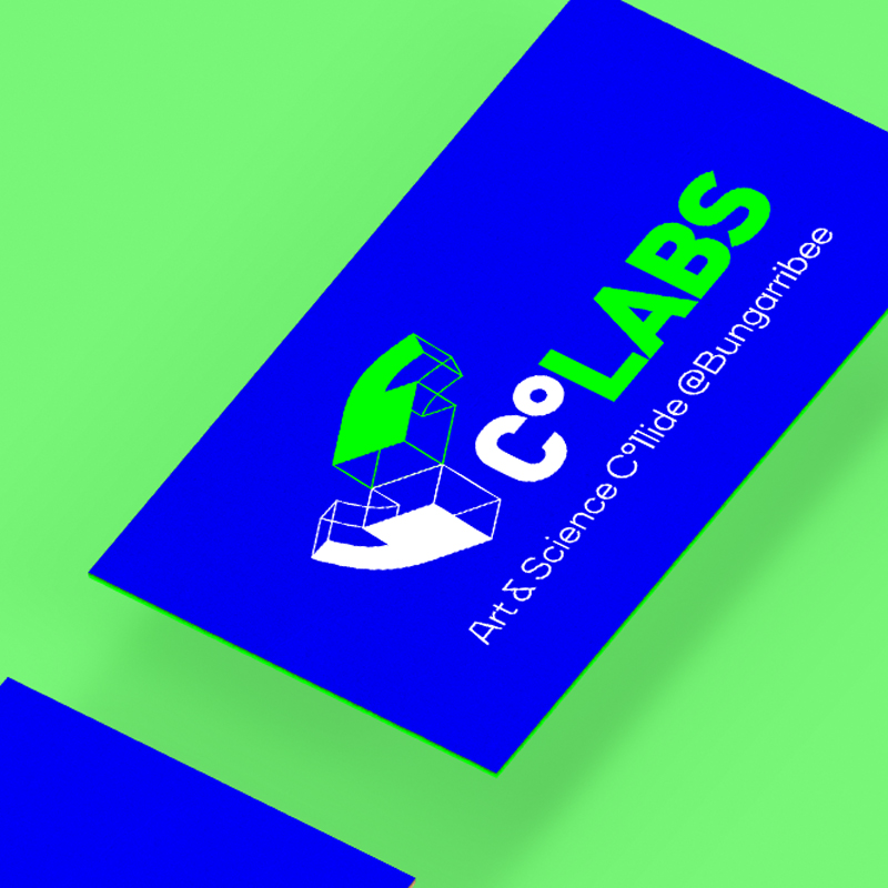 CoLABS Art & Science Branding